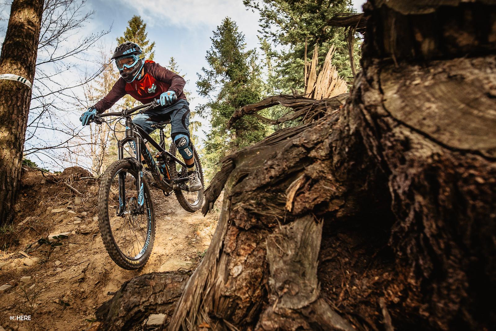 IMG 1216 - eseli - Mountain Biking Pictures - Vital MTB
