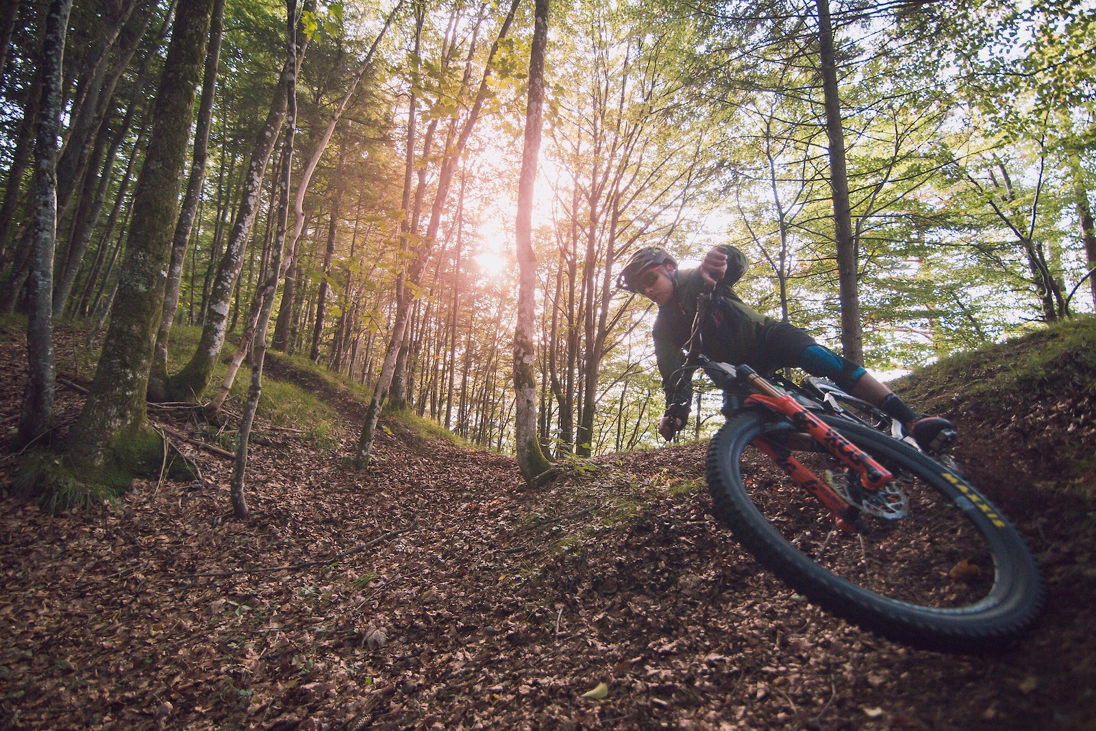 Autumn kicking in - johnseehu - Mountain Biking Pictures - Vital MTB