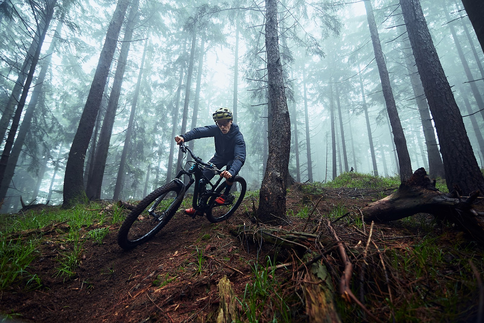 summervibes, not - johnseehu - Mountain Biking Pictures - Vital MTB