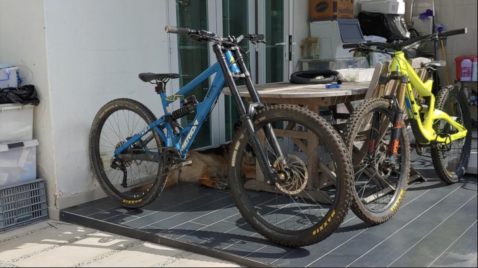 MERIDA ONE-Eighty Downhill bike (ZEROMON Tuning™)