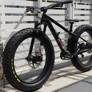 """SHOUKA"" 