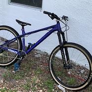 bird skull mtb's NS Bikes eccentric:TONY