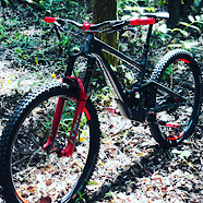 Specialized SWORKS Enduro 2020