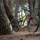Beyond The Tape Podcast's Marin Alpine Trail XR
