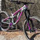 """Pink my ride"" Transition Patrol Carbon"