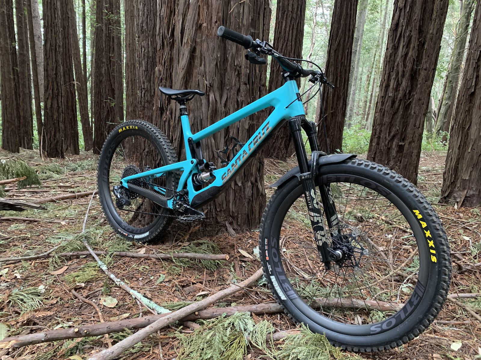 Bronson V3 2019 Chrome EXT AXS Build