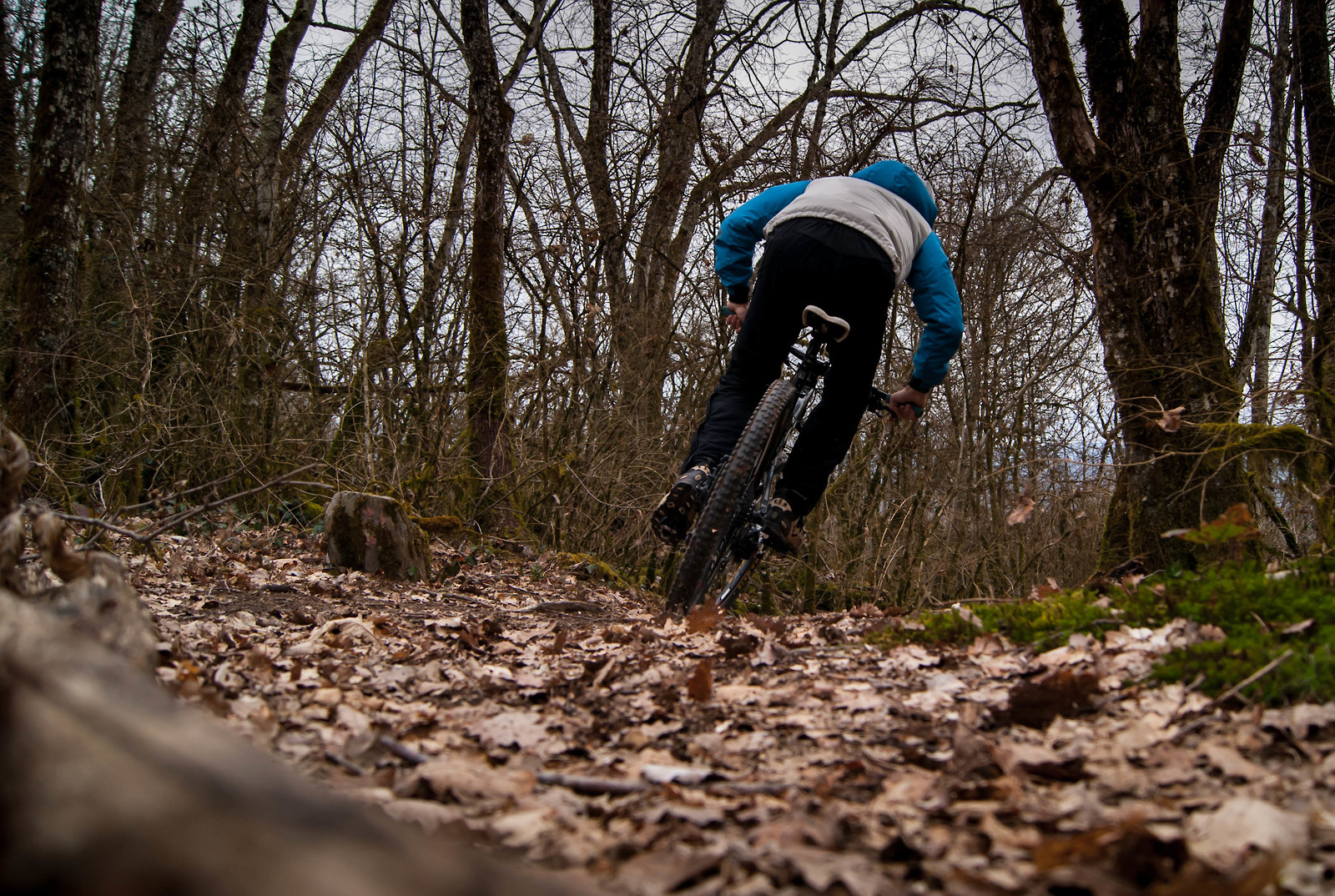 DSC04283 - Romain_Bordon - Mountain Biking Pictures - Vital MTB