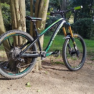 Dartmoor Hornet (Custom Hardtail with 180mm Fork)