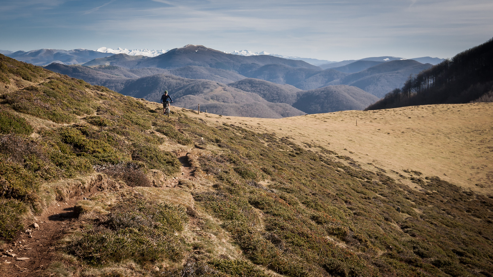 High Basque Singletrack - BasqueMTB - Mountain Biking Pictures - Vital MTB