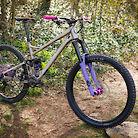 Banshee purple raw Titan