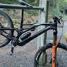21 Stumpjumper EVO S-Works Custom