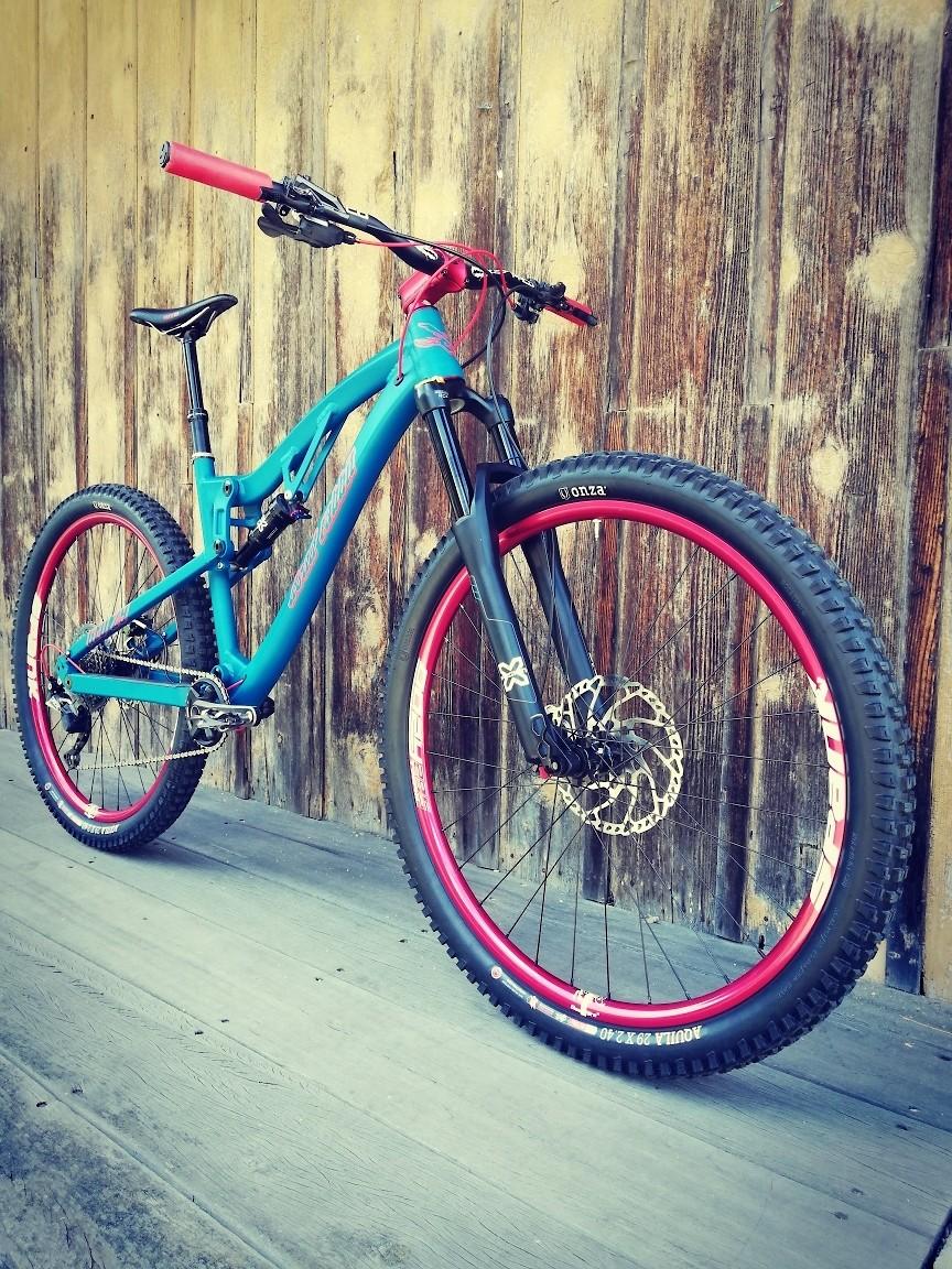 blue/ red - Björn_Aeschlimann - Mountain Biking Pictures - Vital MTB