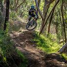 South Oz State World Champs - Fox Creek