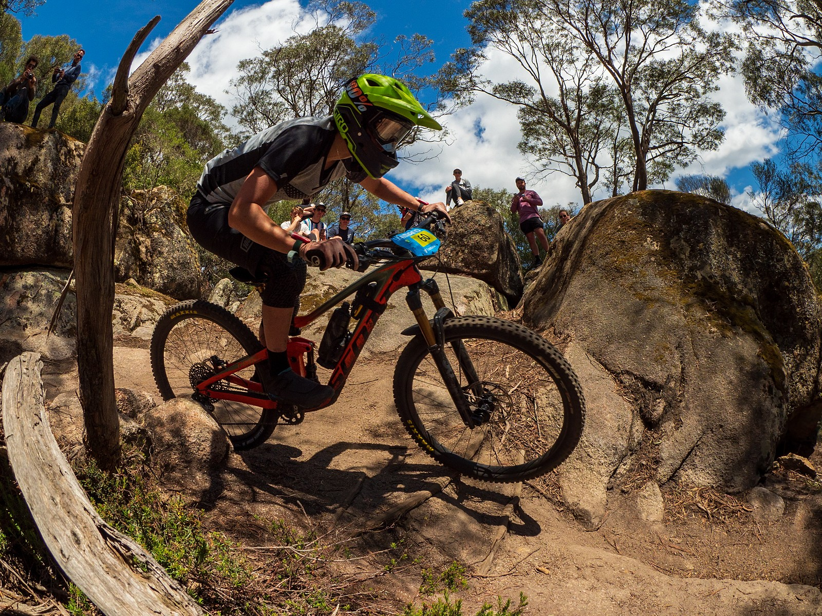 171119-Tassie-0186 - jack.fletcher86 - Mountain Biking Pictures - Vital MTB