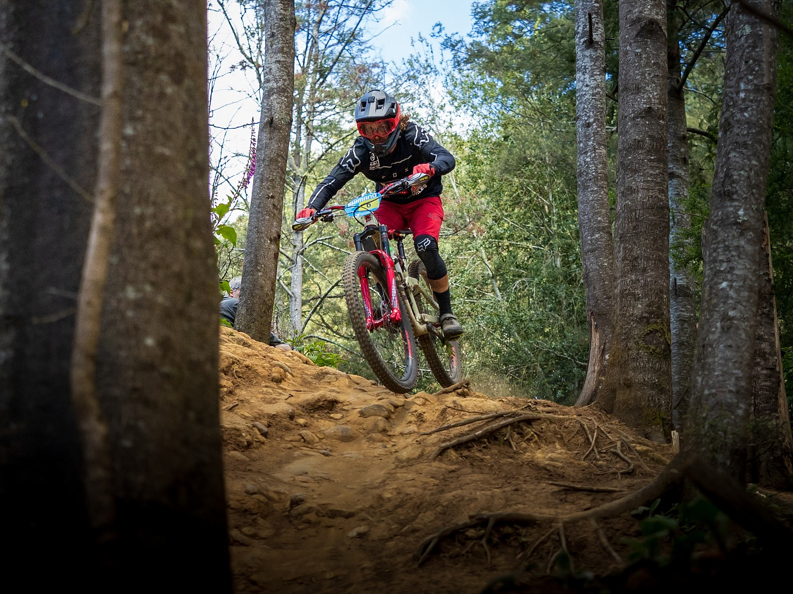 171119-Tassie-1425 - jack.fletcher86 - Mountain Biking Pictures - Vital MTB