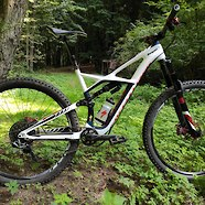 Specialized Enduro Expert custom build