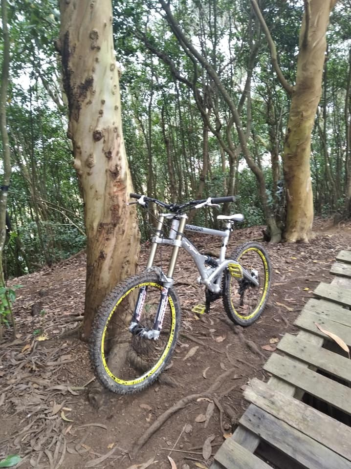 Fun morning at a local trail. - Luis Carreiro - Mountain Biking Pictures - Vital MTB