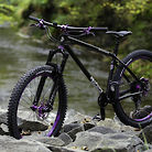 "Stanton Switchback NG ""Deep Purple"""