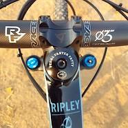 Ibis Ripley