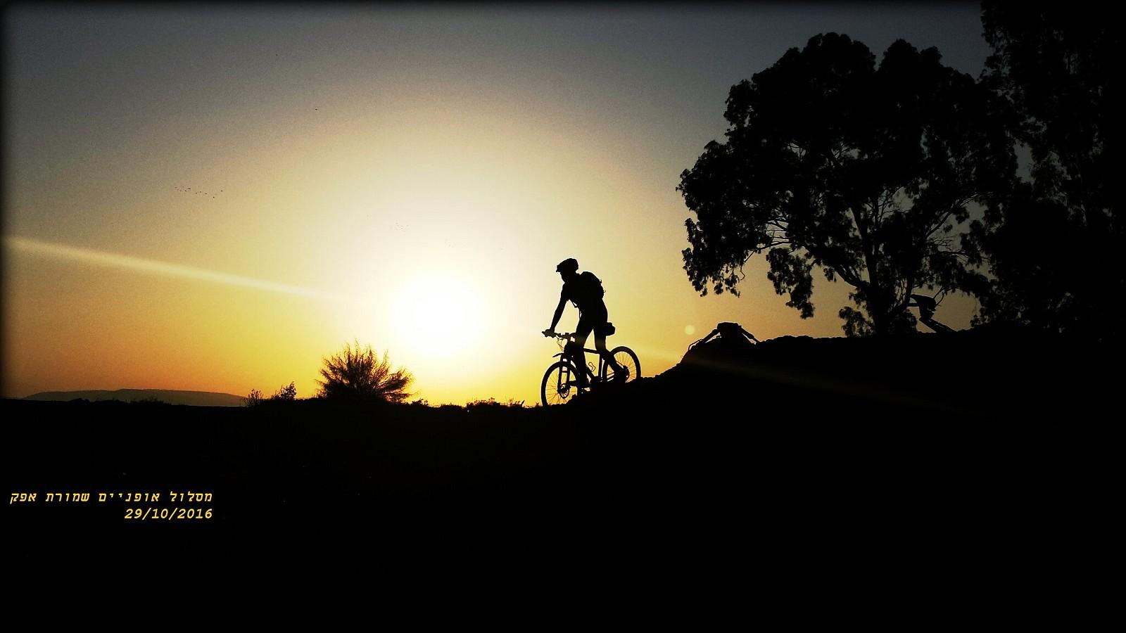 CYMERA 20161029 151622 - guy191184 - Mountain Biking Pictures - Vital MTB