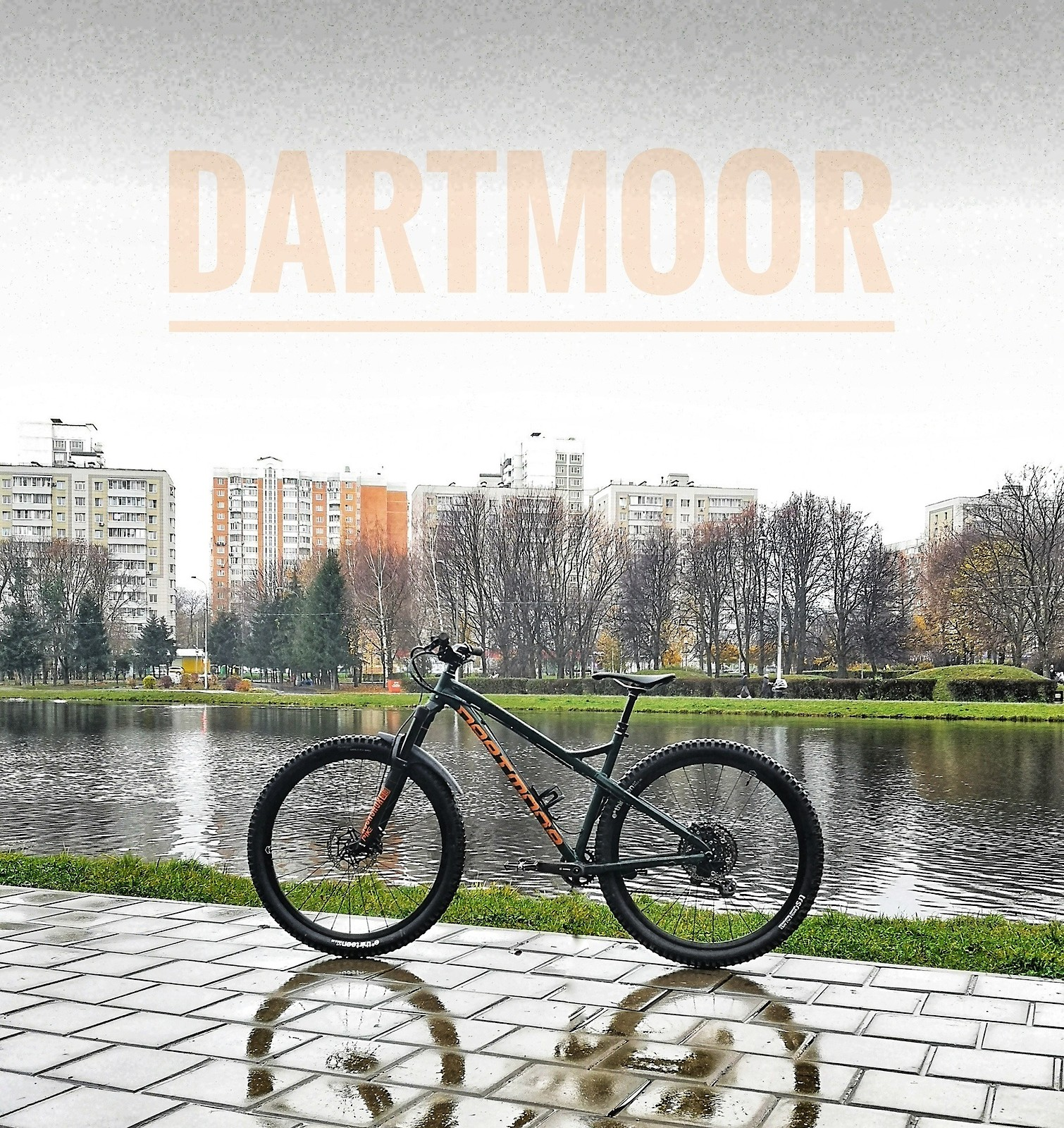 Dartmoor Primal 29