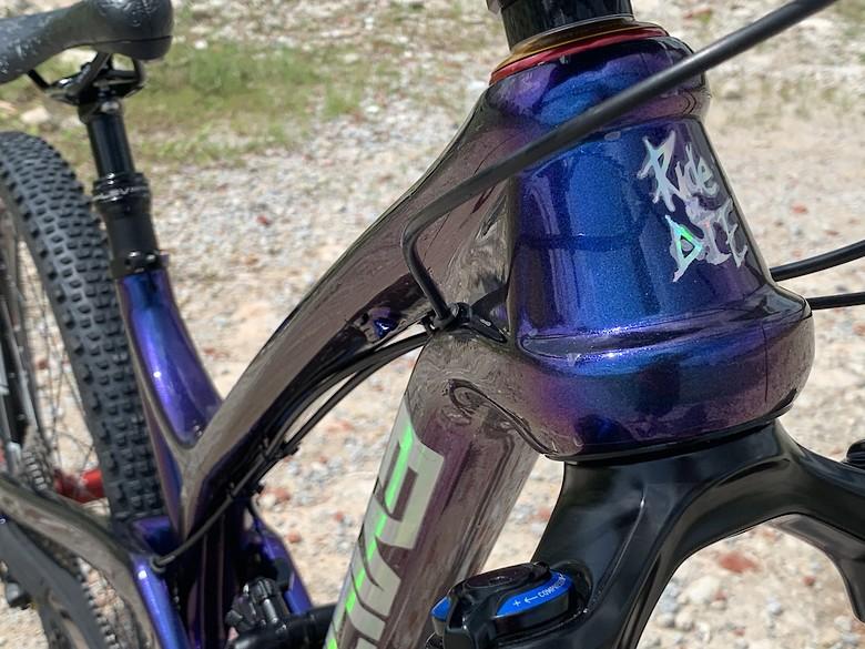 EVIL INSURGENT 2017 Custom Spray