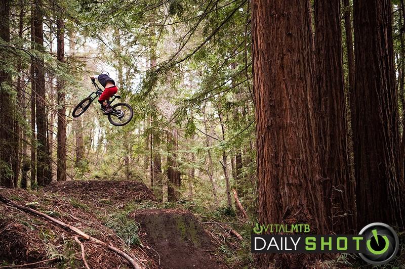 Goods in the Woods - zekeneubauer - Mountain Biking Pictures - Vital MTB