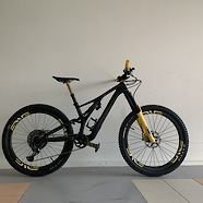 Stumpjumper Sworks