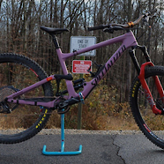 Custom 2020 Specialized Enduro: The Faded Eggplant
