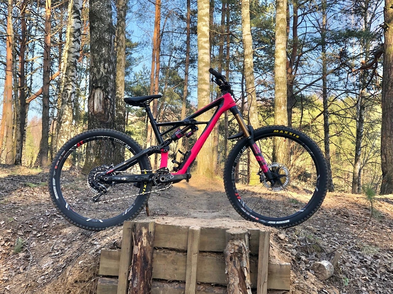 Lacy's Specialized