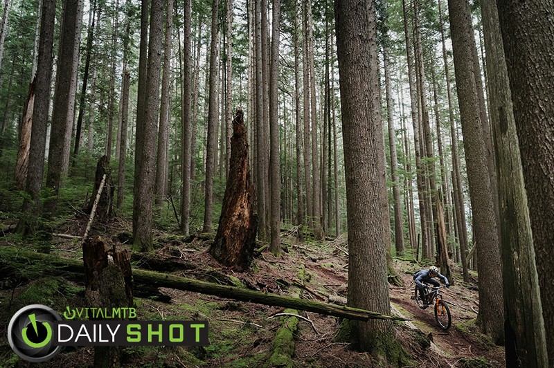 Ben Wallace x NSBillet – Born On The Shore - NSBillet03 - Mountain Biking Pictures - Vital MTB