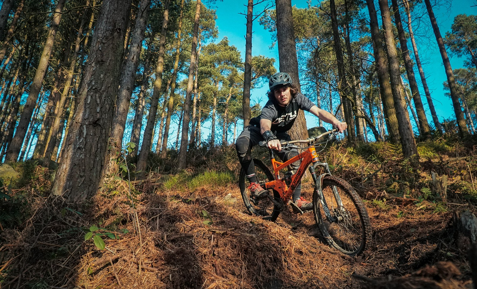 Stainburn Snaps - Mushrum - Mountain Biking Pictures - Vital MTB