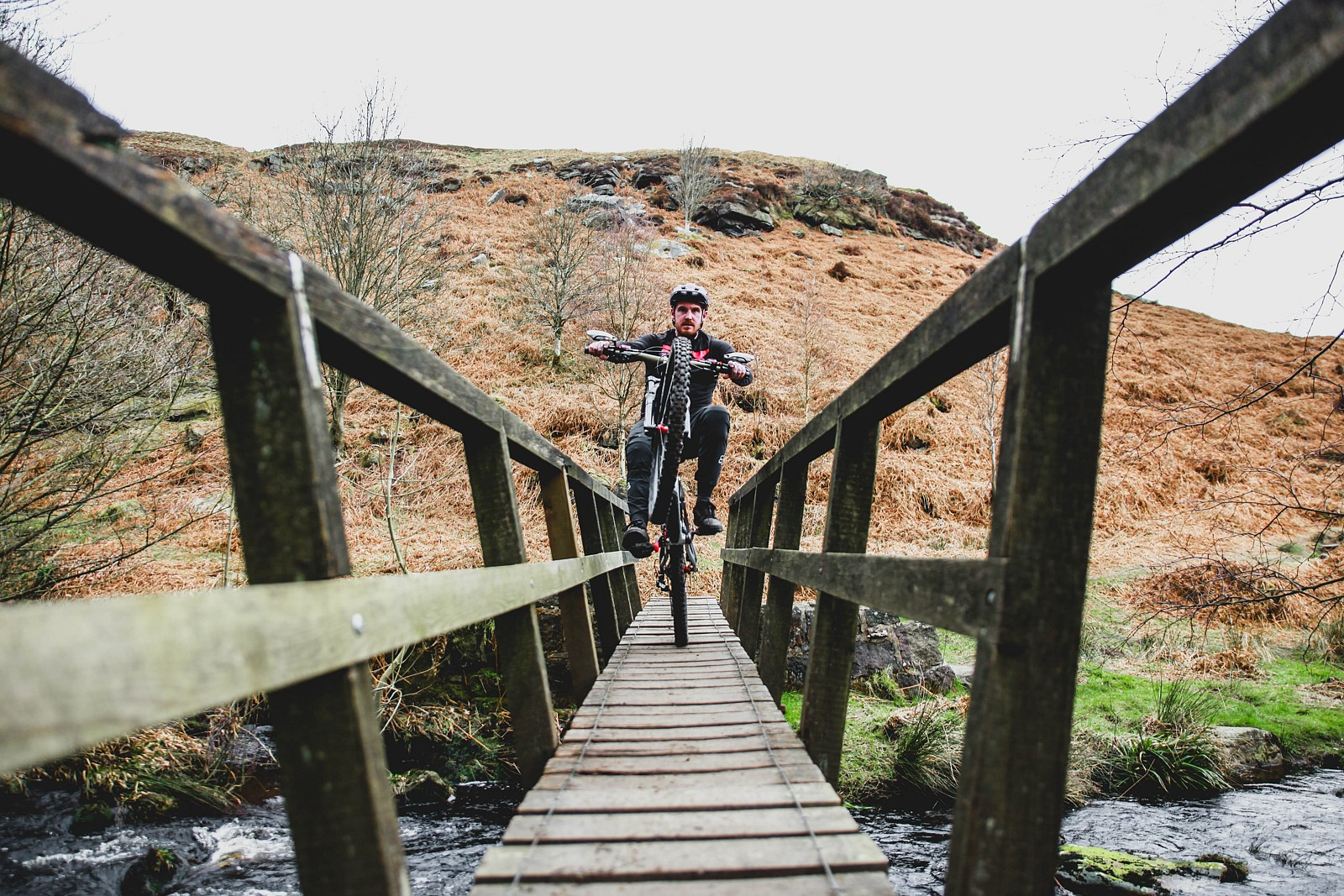 IMG 0547 - Mushrum - Mountain Biking Pictures - Vital MTB