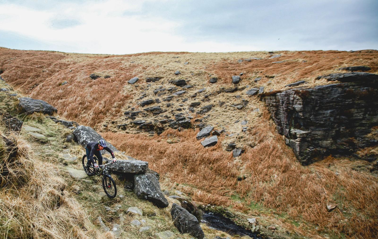 IMG 0566 - Mushrum - Mountain Biking Pictures - Vital MTB