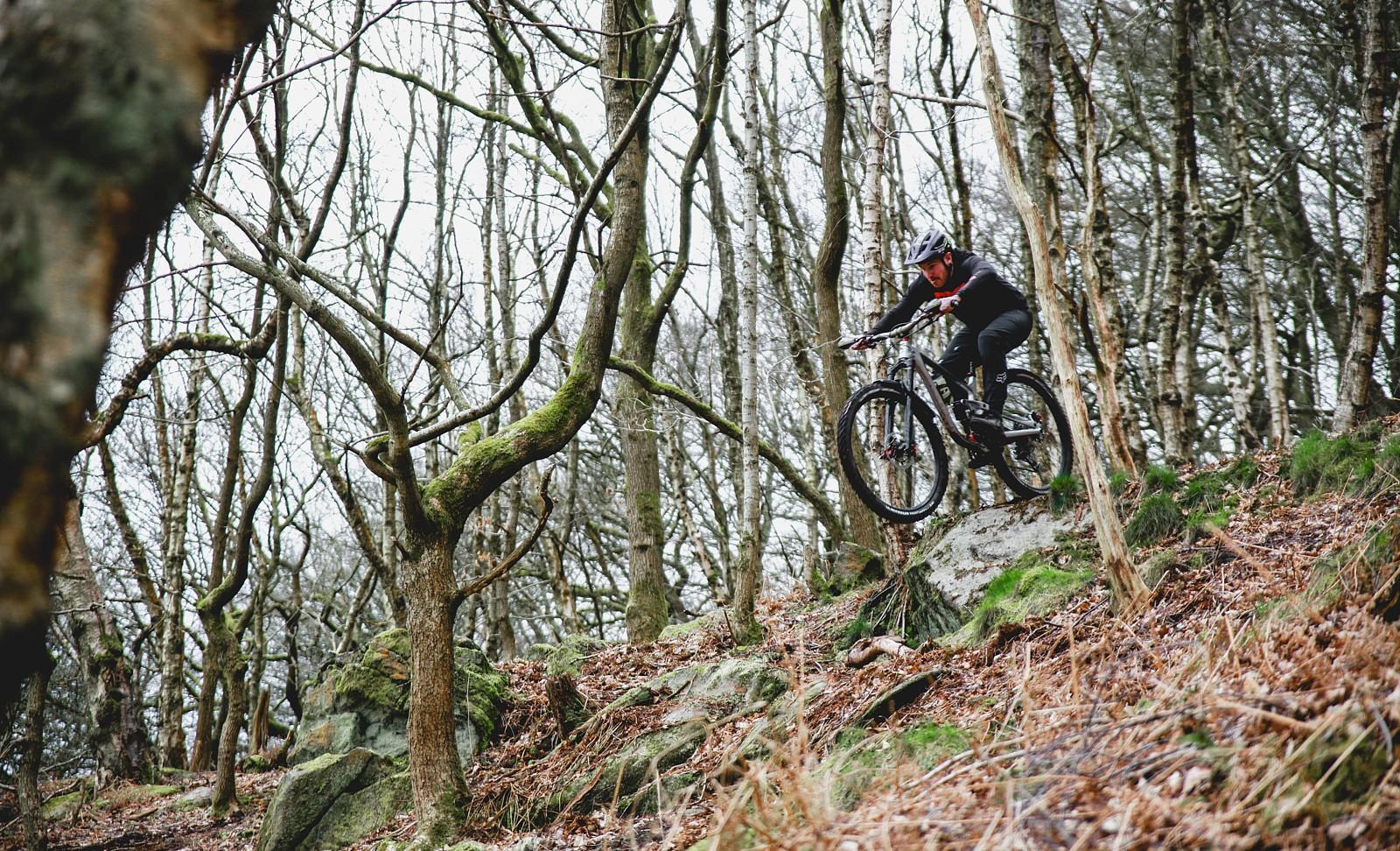 IMG 0615-2 - Mushrum - Mountain Biking Pictures - Vital MTB