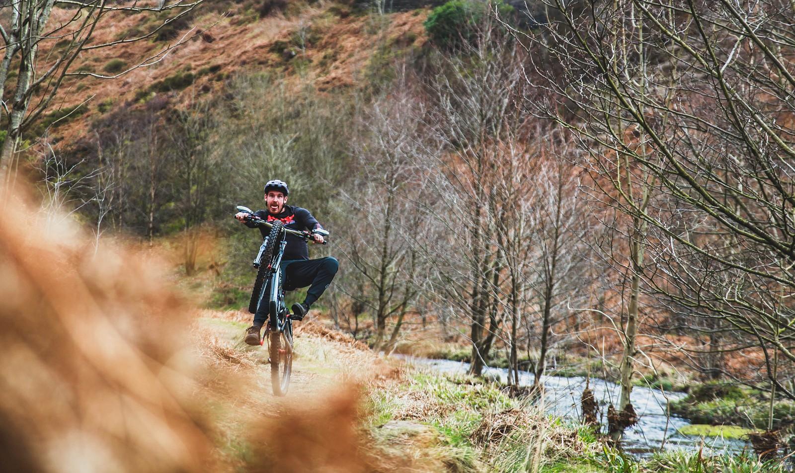 IMG 0533 - Mushrum - Mountain Biking Pictures - Vital MTB