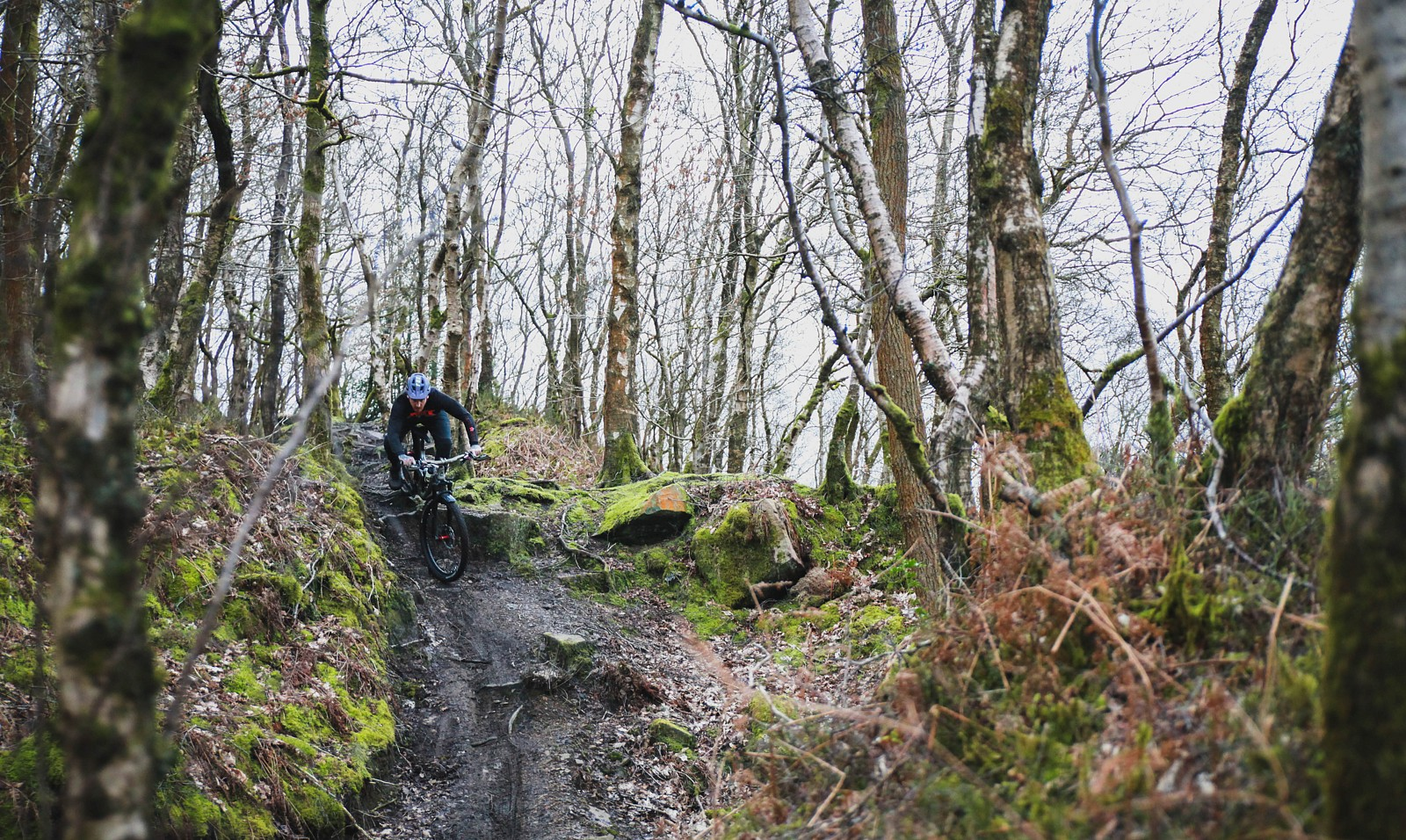 IMG 0646 - Mushrum - Mountain Biking Pictures - Vital MTB