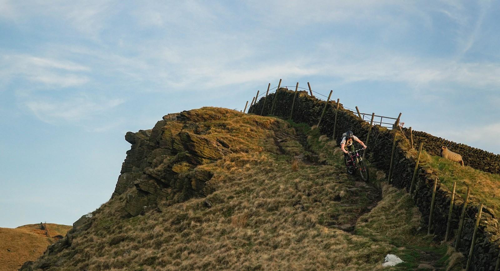 DSC09291 (2) - Mushrum - Mountain Biking Pictures - Vital MTB