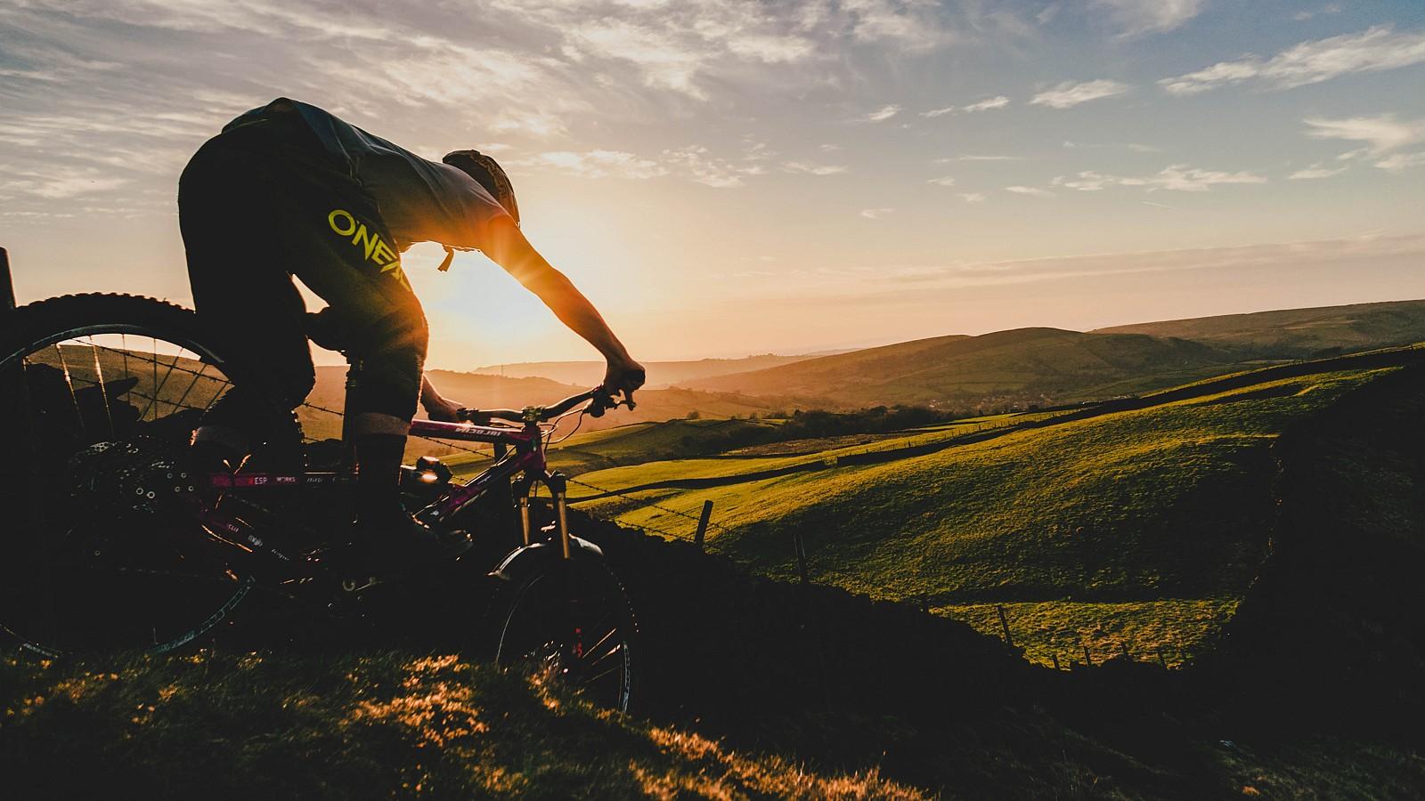 Golden Hour - Mushrum - Mountain Biking Pictures - Vital MTB