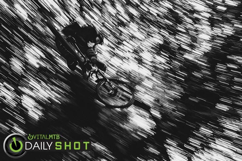 Josh Noton - Mushrum - Mountain Biking Pictures - Vital MTB