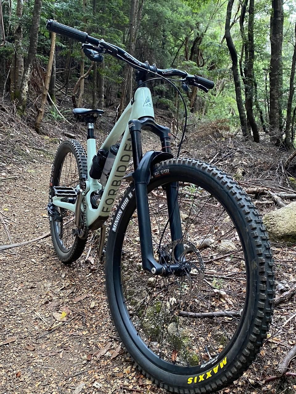 Forbidden Druid - Extreme Build - flemmds Bike Check