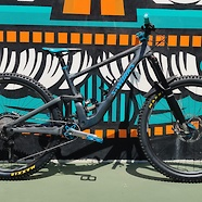 2020 S-WORKS Enduro - CUSTOM