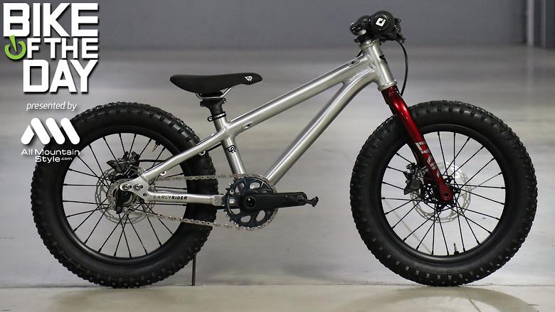 "Early Rider Hellion 16"""
