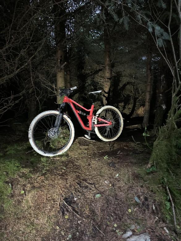 Canyon spectral mullet bike