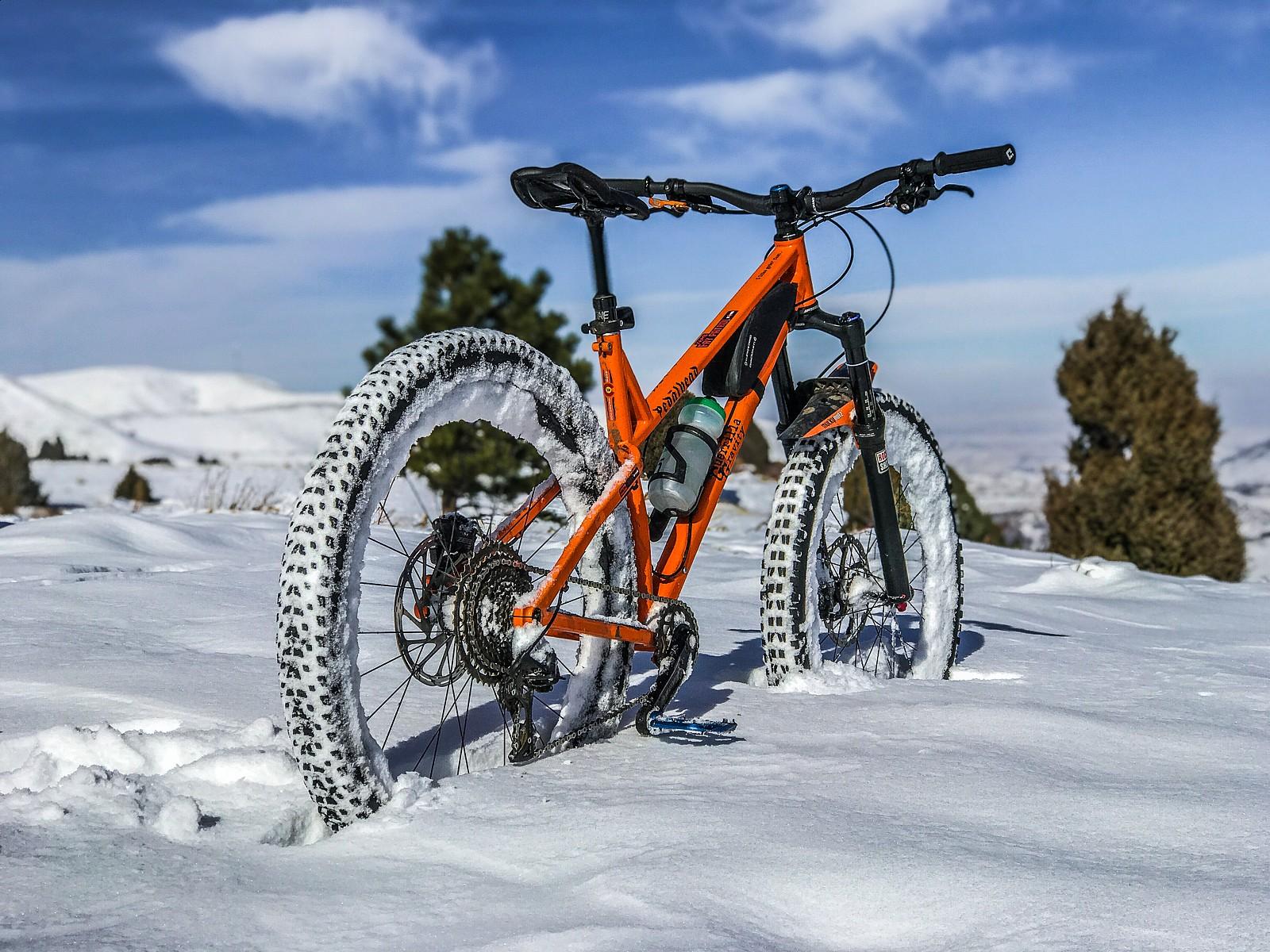 A friend's Pedalhead  - The Notorious PFC MTB - Mountain Biking Pictures - Vital MTB