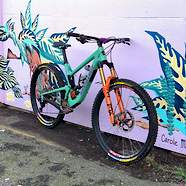 TrailHorse's Santa Cruz