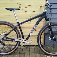 Custom Specialized 29er