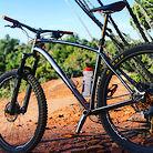 Why cycles S7 custom 29er titanium hardtail