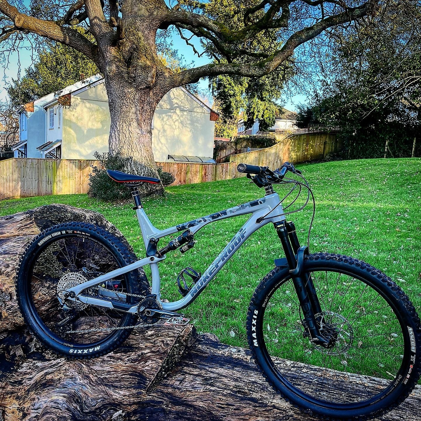 Custom mullet 2021 nukeproof reactor