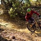 NS Bikes Snabb